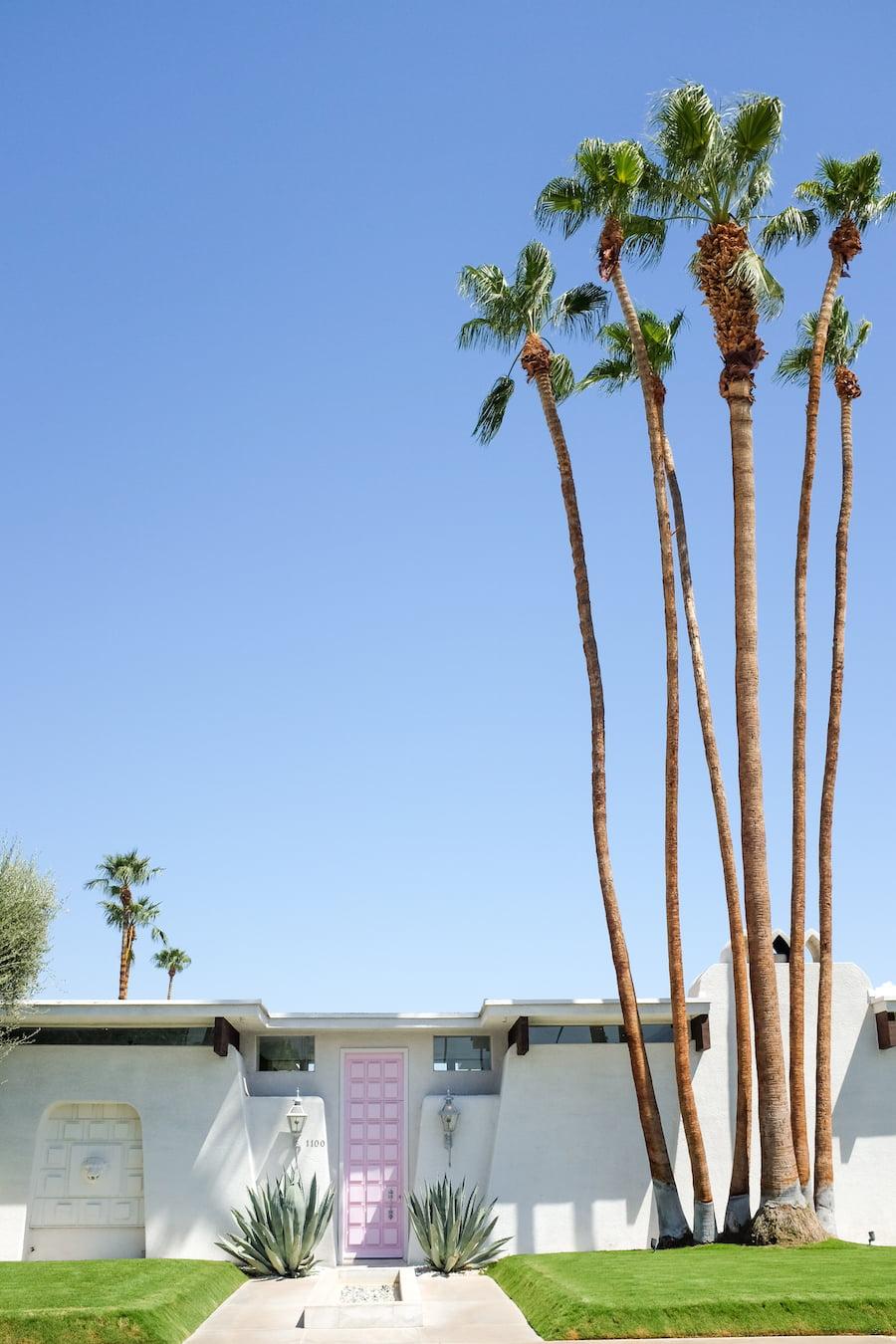 Palm Springs Door Tour