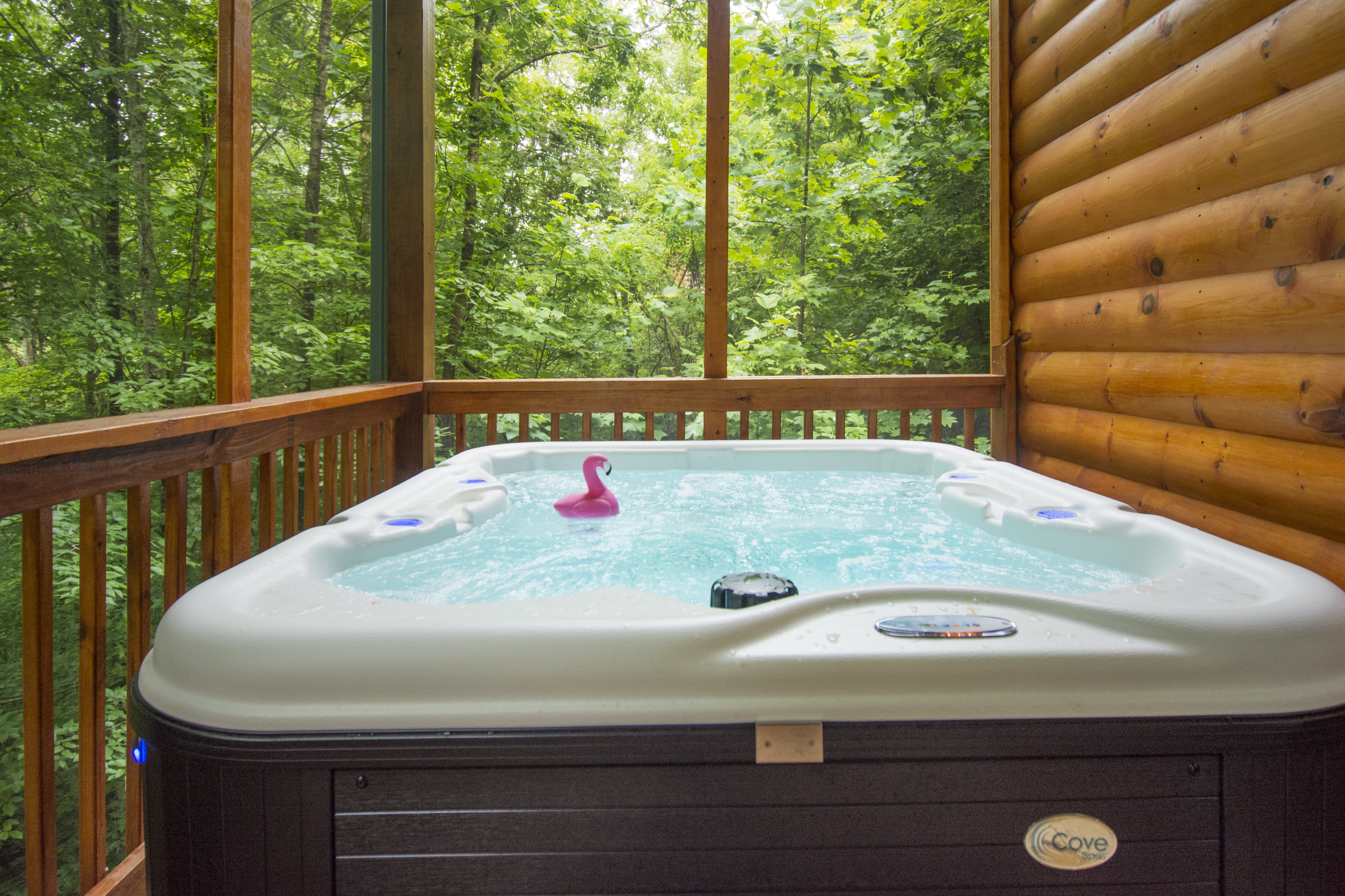 Stay Minty Cabins in the smoky mountains.